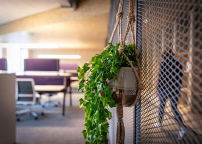 Green and sustainable workplaces